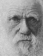 darwin-old.jpg