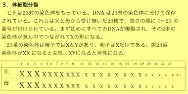 p-23-2.jpg
